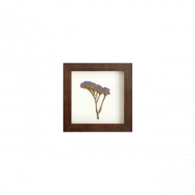 Quadro em Madeira Imbuia Statice Roxa 15x15cm