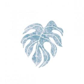 Poster Mundi Coetâneo Costela-de-Adão Azul A3