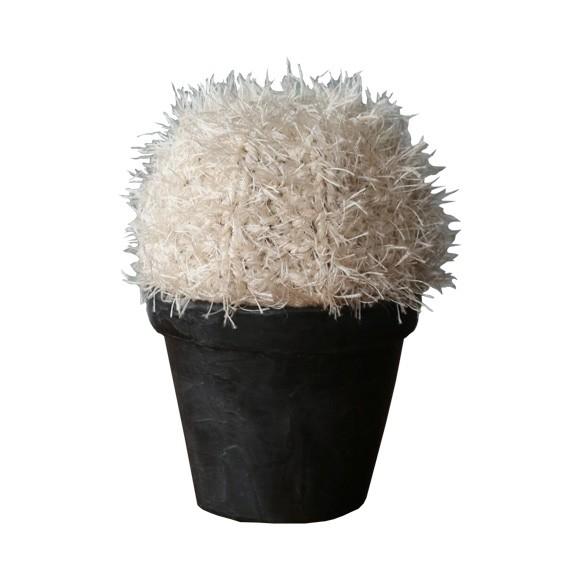 Cacto Bola no Vaso