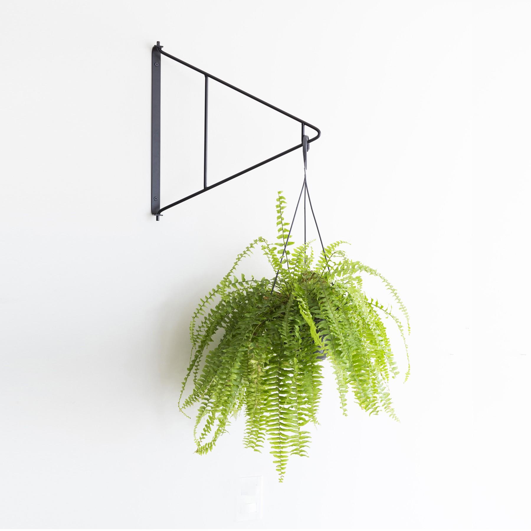 Suporte Articulado Para Plantas Suspensas Modelo Mamba