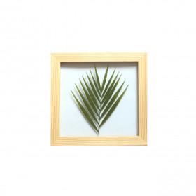 Quadro Palmeira 20x20 cm - Pinus