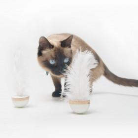 Par Brinquedos para Gatos Ginga Madpop