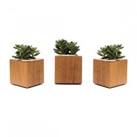 Trio Vaso Cubo