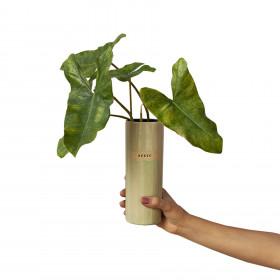 Vaso em Cerâmica Porta Vida Verde M - Afeto