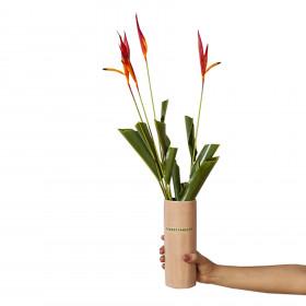 Vaso em Cerâmica Porta Vida Rosa M - Transformação