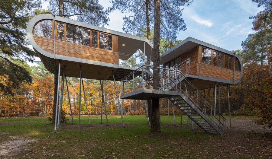 A Casa na Árvore