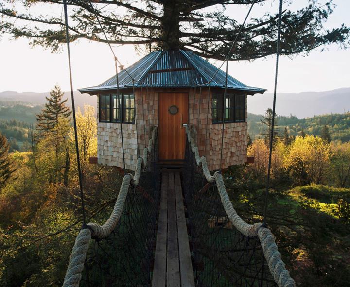 Grupo de amigos constrói casa na árvore como você nunca viu
