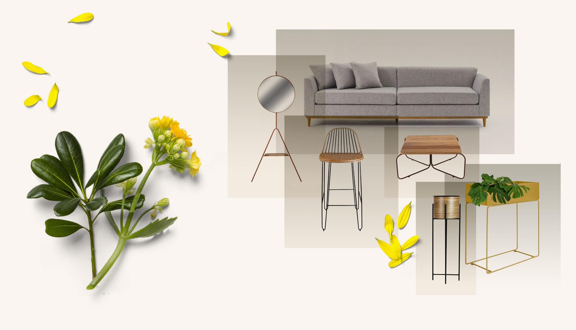Moodboard Acalanto | Peças de Design Assinado e Curadoria Hometeka.